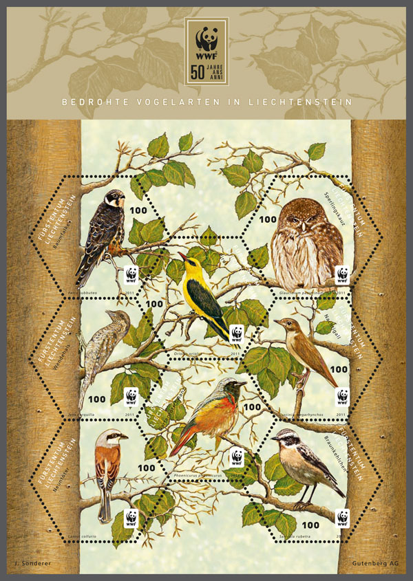 Hobby / Redstart / Nightingale / Red-backed shrike / Oriole / Whinchat Pygmy owl / Wryneck